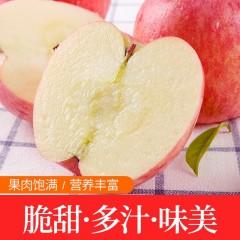【延安扶贫馆】顶端·洛川苹果75#20枚礼盒装 顺丰包邮