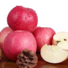 【渭南扶贫馆】白水县 新农妹 珍妹 陕西白水苹果16枚85mm 大果 精选 约9斤装/箱