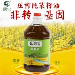 【汉中扶贫馆】洋县 鹮宝压榨菜籽油5L/桶