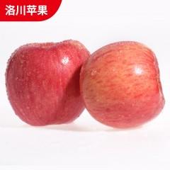 【延安扶贫馆】顶端 洛川苹果85#12枚 分销包装 顺丰免邮