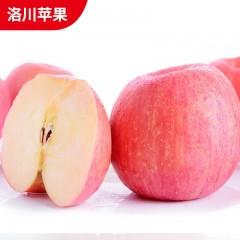 【延安扶贫馆】顶端 洛川苹果80#24枚 分销包装 .顺丰免邮