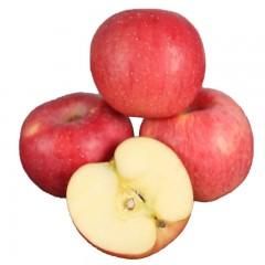 【榆林扶贫馆】米脂县海霞榆果米脂山地红富士苹果80-85mm16枚/箱
