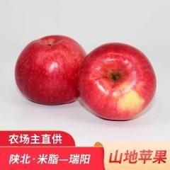 【榆林扶贫馆】米脂县海霞榆果米脂山地瑞阳苹果70-75mm16枚/箱