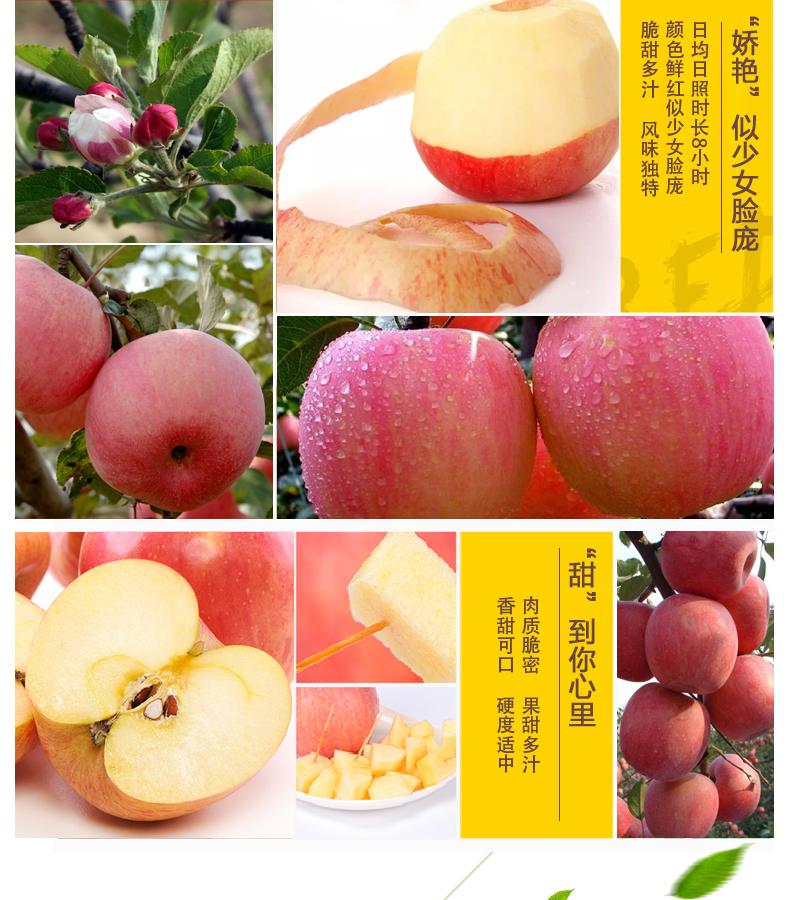 苹果详情页_09.jpg