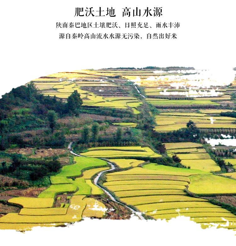 拓福牛普通大米5KG_05.jpg