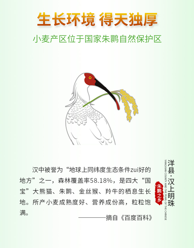 面条详情_05.jpg