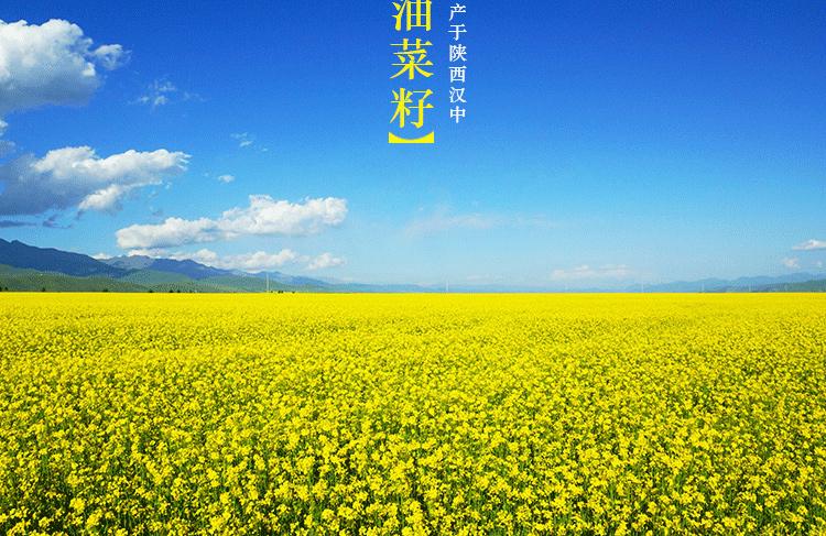 小纯香_05.jpg