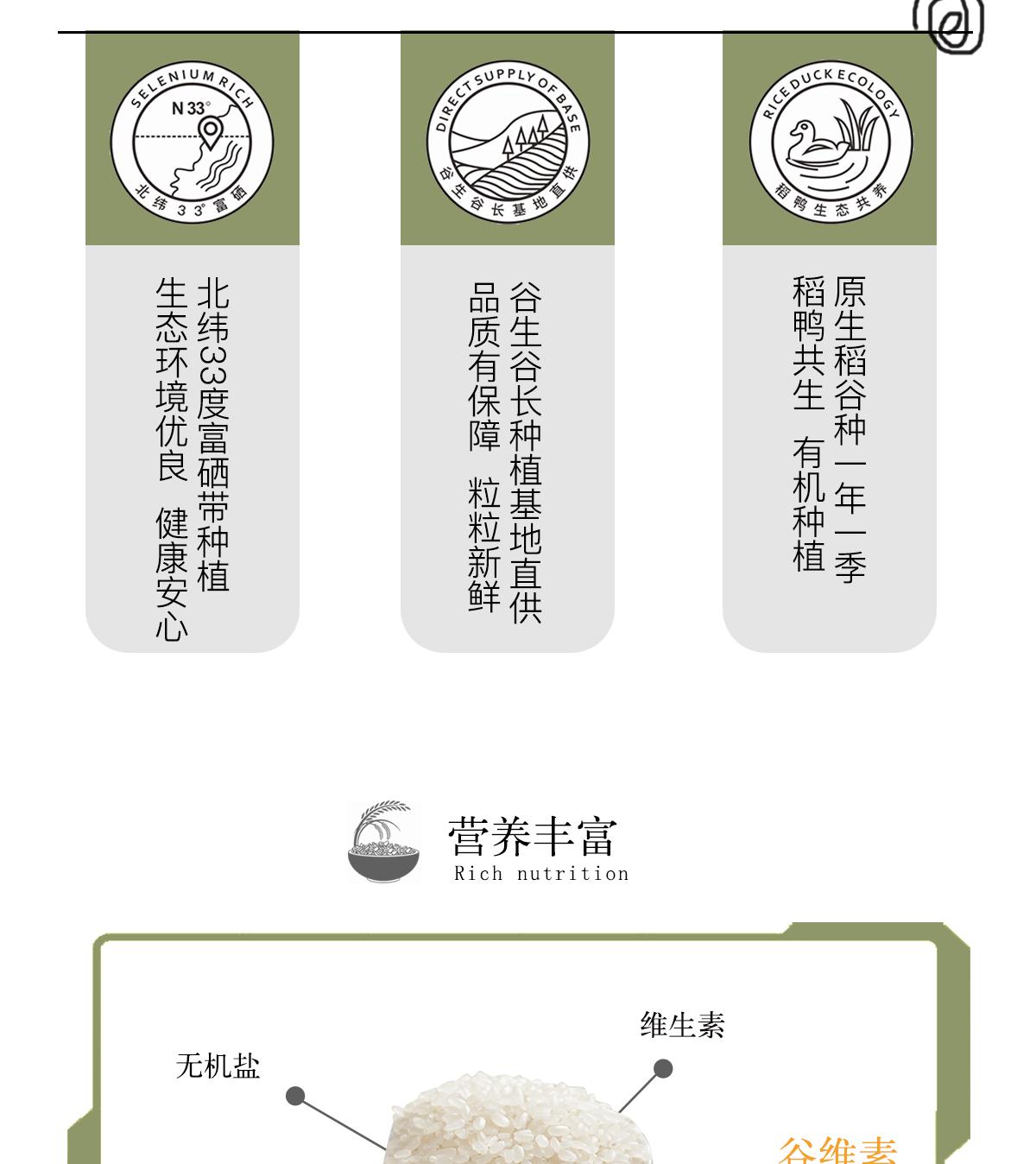 香稻贡米_05.png
