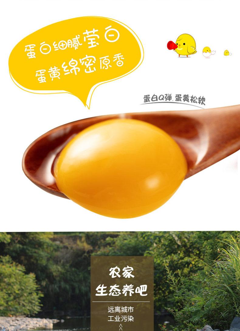 太白土鸡蛋2.jpg