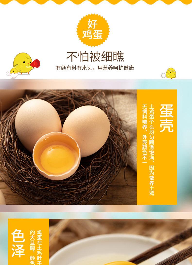 太白土鸡蛋5.jpg