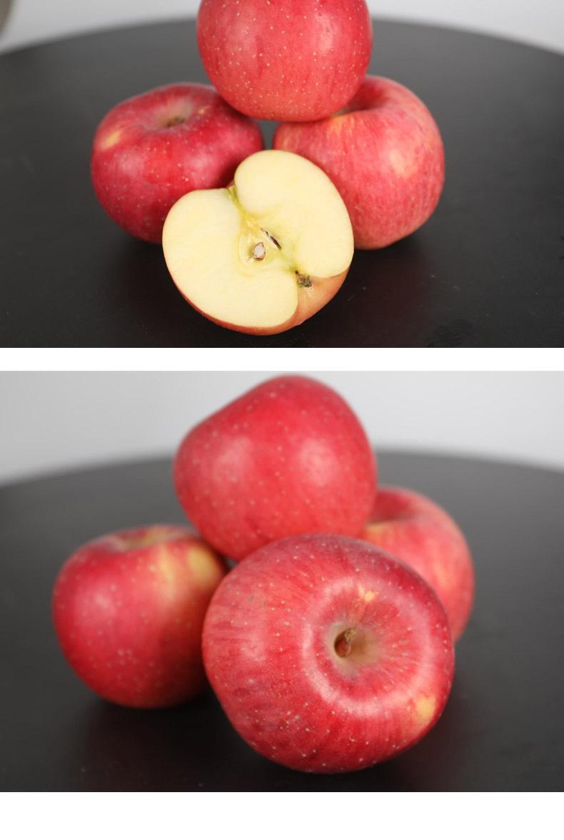苹果_05.jpg