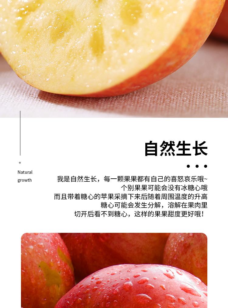冰糖心苹果家庭装_09.jpg