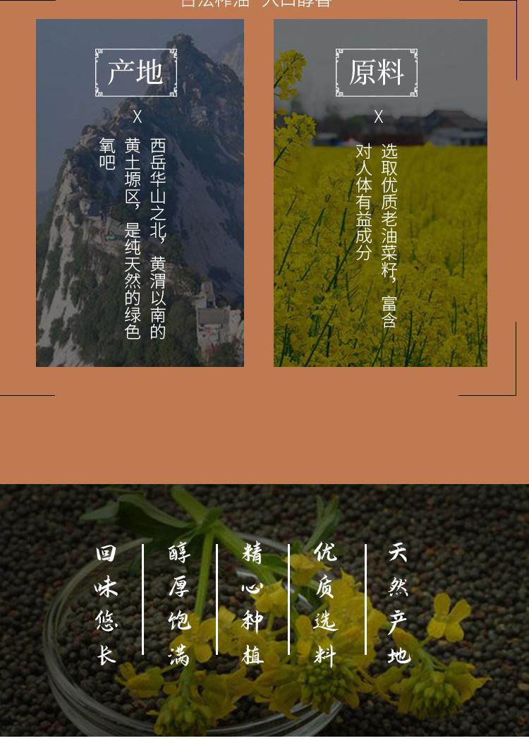 菜籽油zui_03.jpg